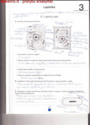 Biologija 10 klasei 1 dalis 15 puslapis nemokami pratybų atsakymai