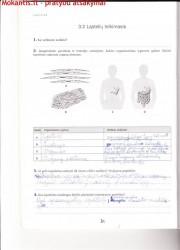 Biologija 10 klasei 1 dalis 16 puslapis nemokami pratybų atsakymai