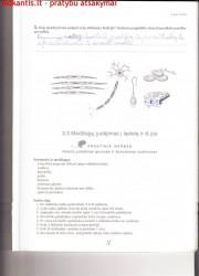 Biologija 10 klasei 1 dalis 17 puslapis nemokami pratybų atsakymai