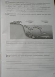 Biologija 10 klasei 11 puslapis nemokami pratybų atsakymai