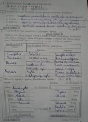 Biologija 10 klasei 13 puslapis nemokami pratybų atsakymai