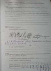 Biologija 10 klasei 21 puslapis nemokami pratybų atsakymai