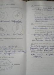 Biologija 10 klasei 24-25 puslapis nemokami pratybų atsakymai