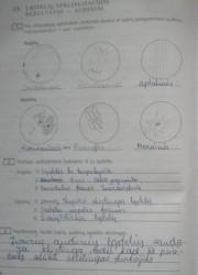 Biologija 10 klasei 26 puslapis nemokami pratybų atsakymai