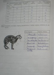 Biologija 10 klasei 30 puslapis nemokami pratybų atsakymai