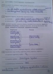 Biologija 10 klasei 5 puslapis nemokami pratybų atsakymai