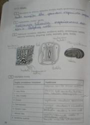 Biologija 10 klasei 54 puslapis nemokami pratybų atsakymai