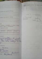 Biologija 10 klasei 58-59 puslapis nemokami pratybų atsakymai