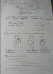 Biologija 10 klasei 61 puslapis nemokami pratybų atsakymai