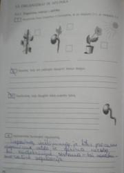 Biologija 10 klasei 72 puslapis nemokami pratybų atsakymai