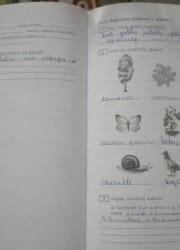 Biologija 10 klasei 74-75 puslapis nemokami pratybų atsakymai