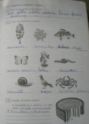 Biologija 10 klasei 75 puslapis nemokami pratybų atsakymai