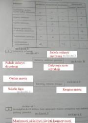 Biologija 10 klasei 23 puslapis nemokami pratybų atsakymai