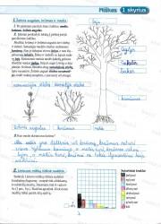 Geografija 6 klasei 2 dalis 1 puslapis nemokami pratybų atsakymai