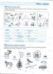 Geografija 6 klasei 2 dalis 11 puslapis nemokami pratybų atsakymai
