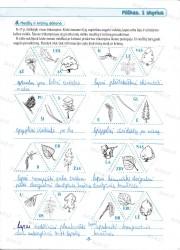 Geografija 6 klasei 2 dalis 3 puslapis nemokami pratybų atsakymai