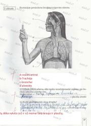 Biologija 7 klasei 1 dalis 47 puslapis nemokami pratybų atsakymai
