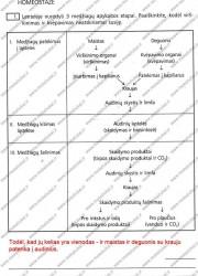Biologija ir sveikata 9 klasei 2 dalis 14 puslapis nemokami pratybų atsakymai