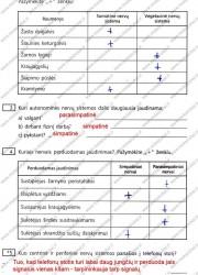 Biologija ir sveikata 9 klasei 2 dalis 28 puslapis nemokami pratybų atsakymai
