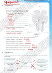 Biologija tau 2 - 9-10 klasei 19 puslapis nemokami pratybų atsakymai