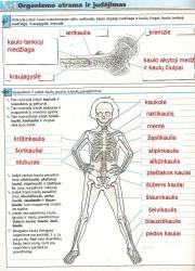 Biologijos pratybos 7 klasei 24 puslapis nemokami pratybų atsakymai