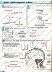 Biologijos pratybos 7 klasei 34 puslapis nemokami pratybų atsakymai