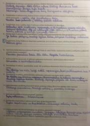 Istorija 10 klasei 14 puslapis nemokami pratybų atsakymai