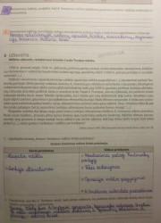 Istorija 10 klasei 21 puslapis nemokami pratybų atsakymai