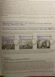 Istorija 10 klasei 49 puslapis nemokami pratybų atsakymai