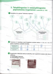 Matematika 5 klasei 58 puslapis nemokami pratybų atsakymai