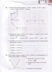 Matematika Tau Plius 7 klasei 2 dalis 13 puslapis nemokami pratybų atsakymai
