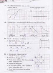 Matematika Tau Plius 7 klasei 2 dalis 16 puslapis nemokami pratybų atsakymai
