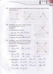 Matematika Tau Plius 7 klasei 2 dalis 17 puslapis nemokami pratybų atsakymai