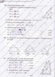 Matematika Tau Plius 7 klasei 2 dalis 24 puslapis nemokami pratybų atsakymai