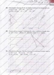 Matematika Tau Plius 7 klasei 2 dalis 31 puslapis nemokami pratybų atsakymai