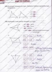 Matematika Tau Plius 7 klasei 2 dalis 38 puslapis nemokami pratybų atsakymai