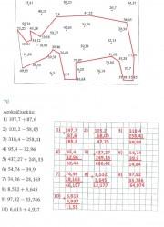Matematika ir pasaulis 2 dalis 29 puslapis nemokami pratybų atsakymai