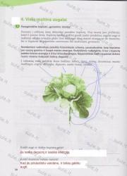 Mokslininku pedomis 1 dalis 20 puslapis nemokami pratybų atsakymai