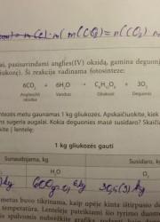 Nemetalu Chemija 10 klasei 20 puslapis nemokami pratybų atsakymai