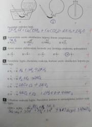 Nemetalu Chemija 10 klasei 31 puslapis nemokami pratybų atsakymai