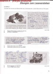 PingPong nev 3 dalis 79 puslapis nemokami pratybų atsakymai