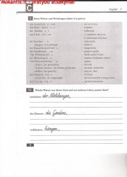 Schritt Fur Schritt 2 dalis 8 puslapis nemokami pratybų atsakymai