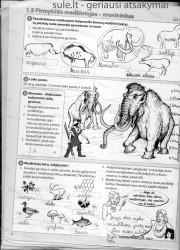 Zingsniai 6 klasei 1 dalis 6 puslapis nemokami pratybų atsakymai